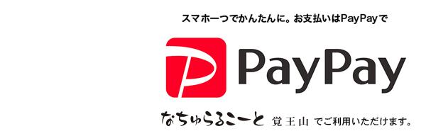 paypay_nat
